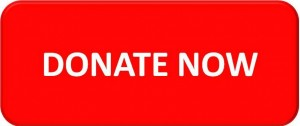 DonateNowButtonRed